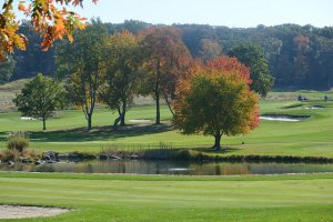 Member Golf Days: Great Competition/Exceptional Value
