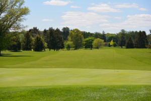 Tenembaum, Budny & Hart are tri-medalists in Mid-Amateur Qualifying at Peddie
