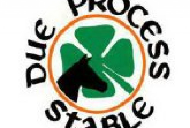 Due Process Stable