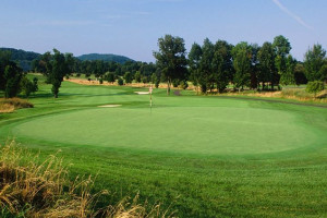 Collins, Guy claim medalist honors in Four-Ball Qualifying